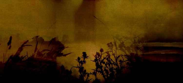Boyne Battlefield -