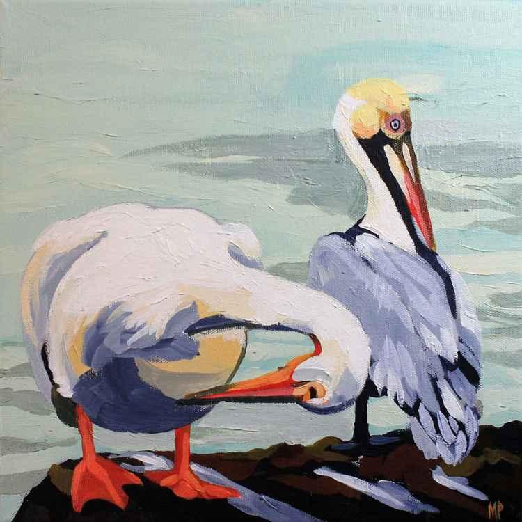 Preening Pelicans -