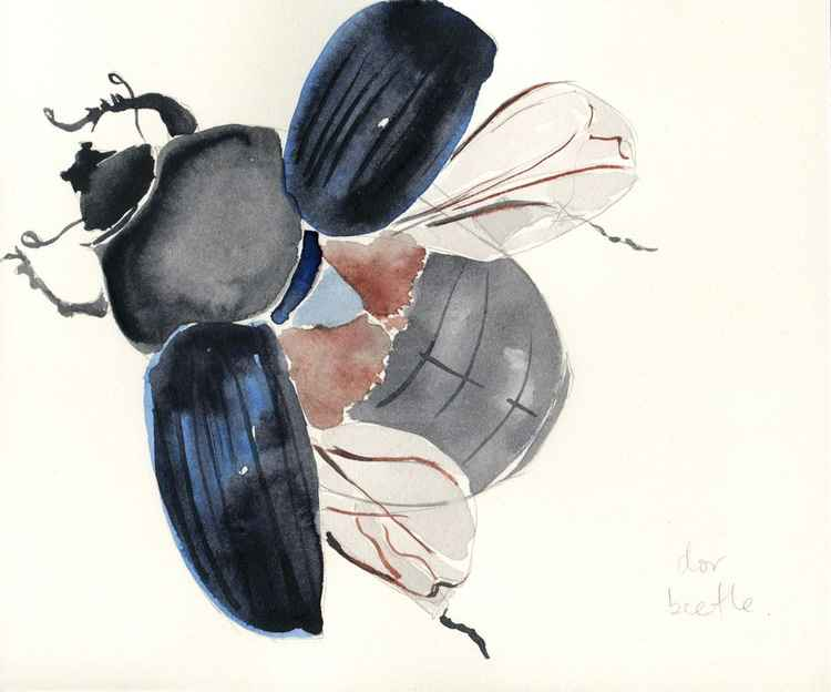 Dor Beetle Watercolour -