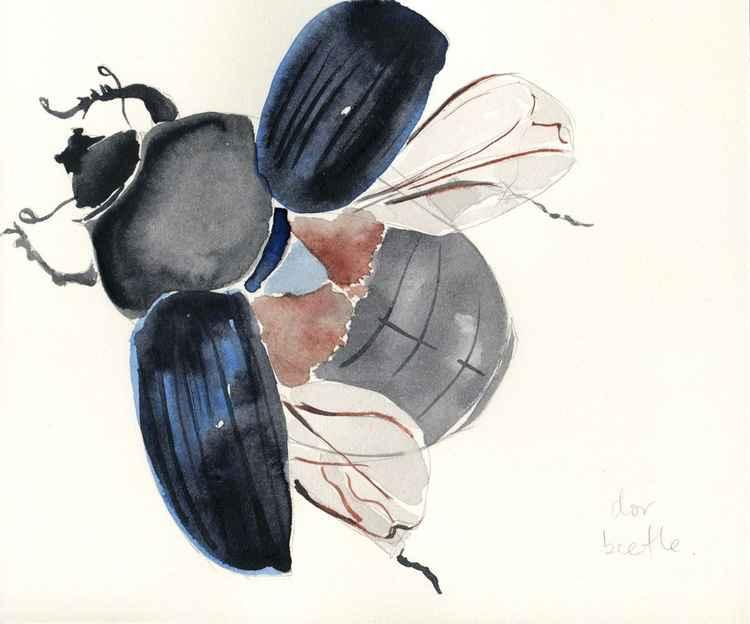 Dor Beetle Watercolour