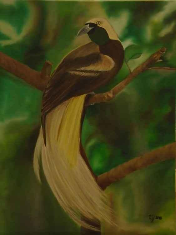 Dancing Bird -