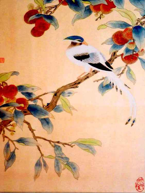 A Bird on Lai Chi Tree -