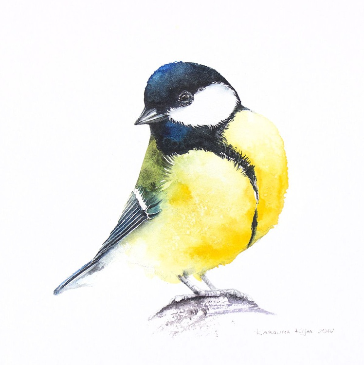 Great tit ,  bird, birds, animals, wildlife watercolour painting - Image 0
