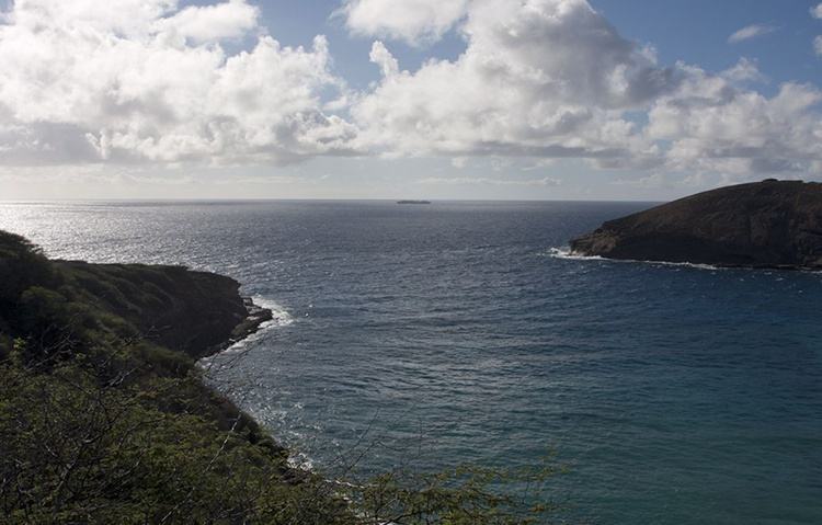 Pacific Horizon - Image 0