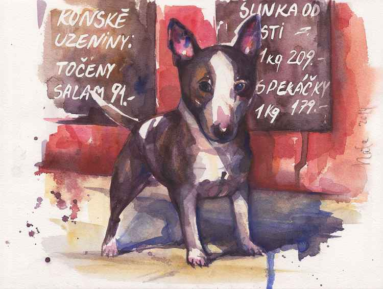Bullterrier ( Series butcher's shop) -